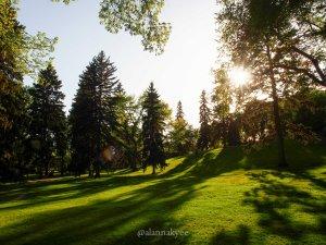 summer, alberta legislature, edmonton