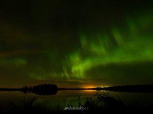 fall, edmonton, elk island