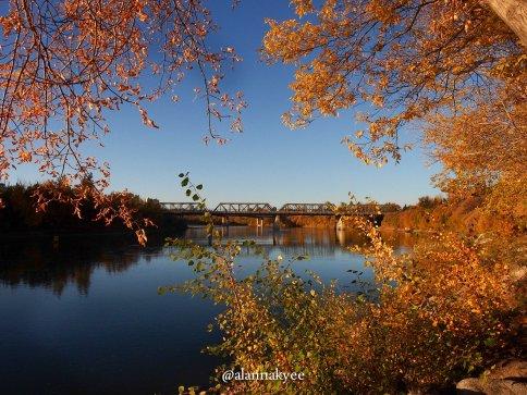 fall, edmonton, low level bridge