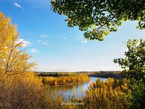 fall, edmonton, river valley
