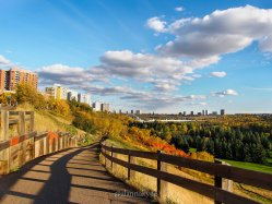 fall, edmonton, river valley
