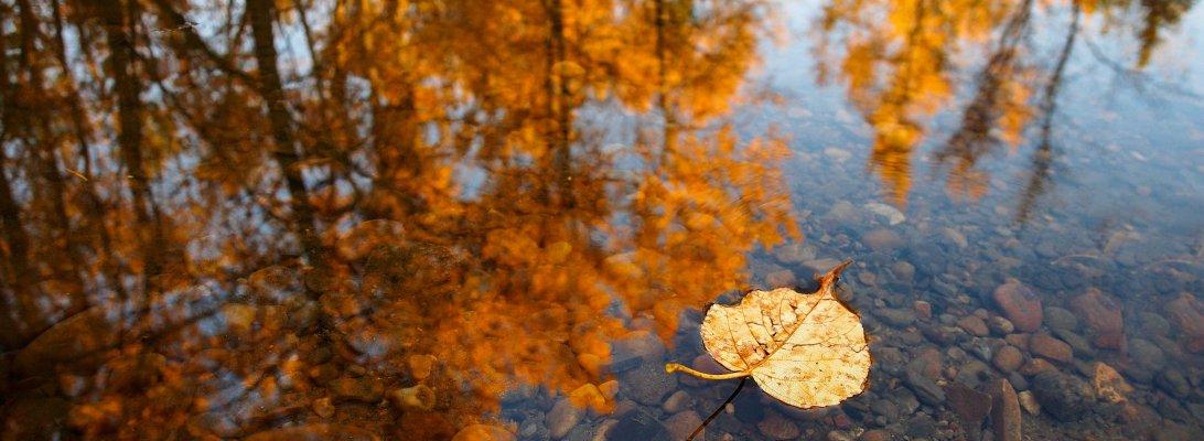 lookbook, fall, edmonton