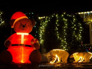 edmonton, holiday lights, christmas, candy cane lane, winter, december