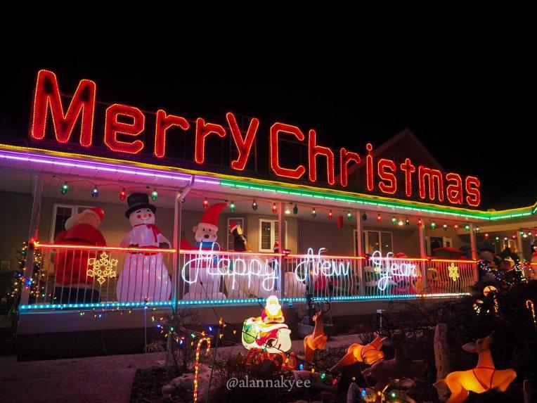 holiday-lights-62