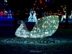 edmonton, holiday lights, christmas, leduc country lights, winter, december