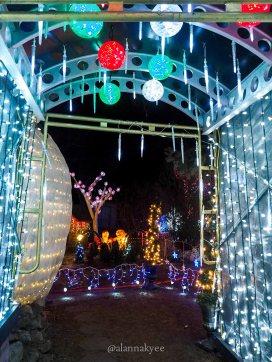 edmonton, holiday lights, christmas, christmas at bob's, winter, december