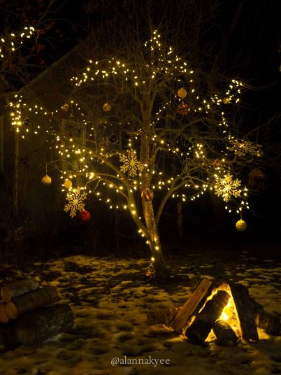 yeg, december, christmas, candy cane lane, holidays