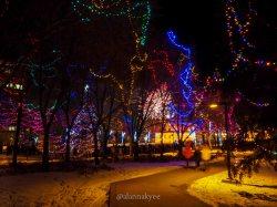 yeg, december, alberta legislature, christmas, fireworks, new years