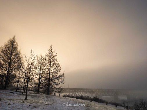 yeg, january, edmonton, winter, high level bridge, fog