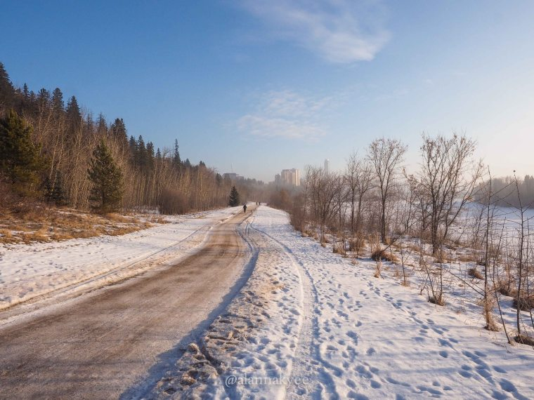 yeg, january, edmonton, winter, mackinnon ravine