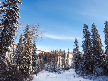 yeg, january, edmonton, winter, whitemud ravine park