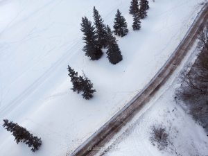 edmonton, yeg, february, winter, river valley