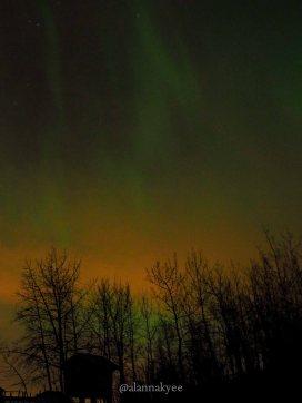yeg, edmonton, lookbook, april, spring, elk island, northern lights, aurora borealis