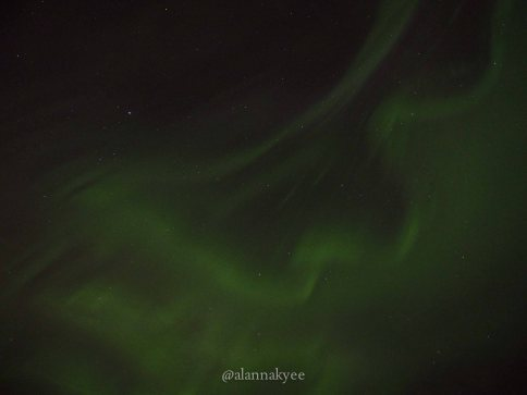 yeg, edmonton, lookbook, april, spring, elk island, northern lights, aurora borealis