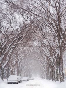 yeg, lookbook, march, snow, street, winter, storm