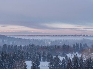 yeg, lookbook, march, snow, winter, river valley, sunrise, fog