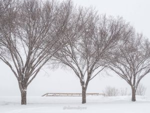 yeg, lookbook, march, snow, winter, storm