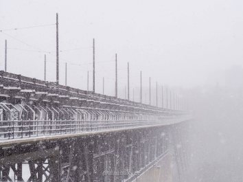 yeg, lookbook, march, snow, high level bridge, river valley, winter, storm