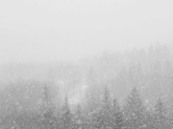 yeg, lookbook, march, snow, river valley, winter, storm