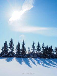 yeg, lookbook, snow, storm, winter, spring, sun
