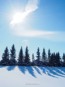 yeg, lookbook, snow, storm, winter, spring, sun