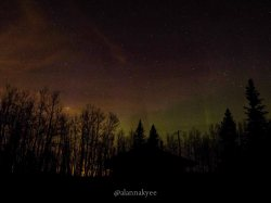 yeg, lookbook, northern lights, aurora borealis